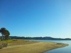 En attendant le ferry, vue sur Buffalo Beach, la longue plage de Whitianga...