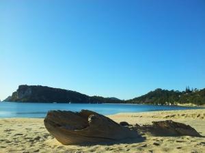 Maramaratotara Bay, une merveille de plus dans le Coromandel !