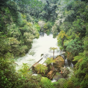Okere Falls, you made my day ! <3